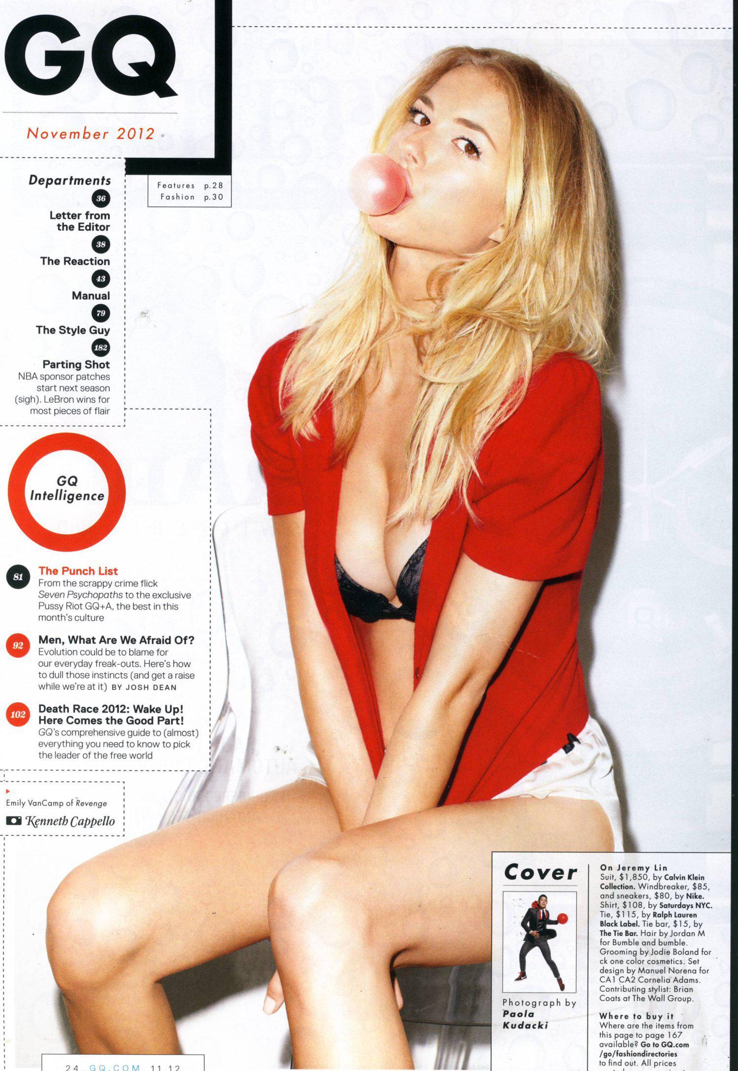 Emily VanCamp sin ropa interior