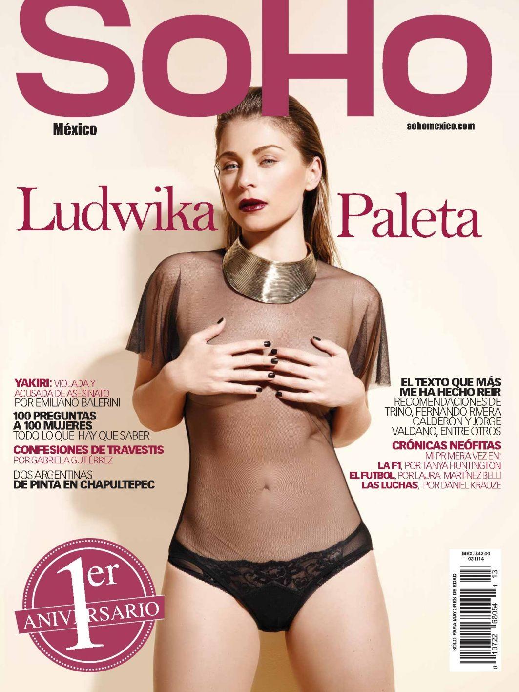 imagenes fakes de ludwika paleta desnuda