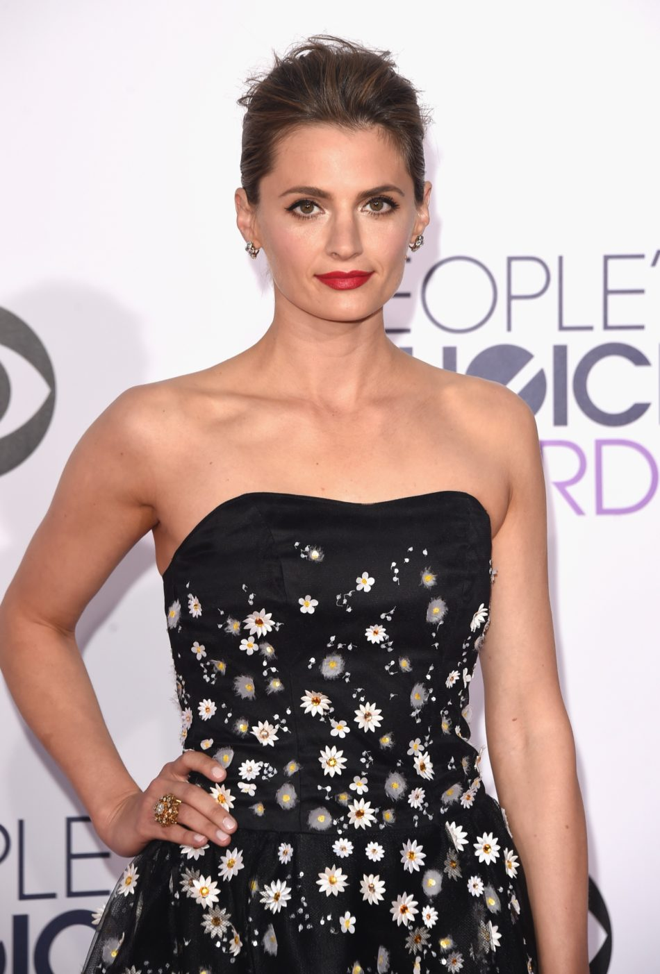 Stana Katic pilladas